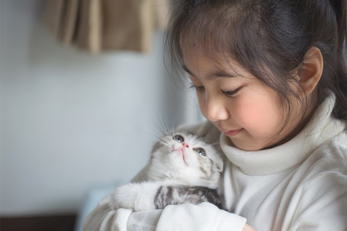 Cats may be the easiest pet to take care of.  (Image: Getty)
