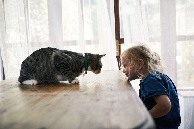 Having a cat as a pet helps children learn to respect animals. (Image: Getty)